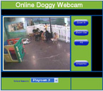Online Doggy: Kennel cam, Webcam, Pet Care Providers, pet daycare.